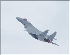 F15 -1.JPG