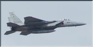 F15 -2.JPG